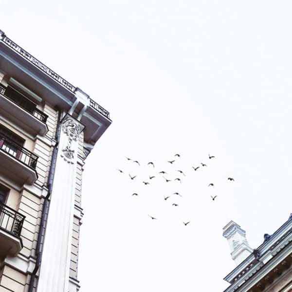 ETF-Sparplan einrichten - Schritt für Schritt Anleitung